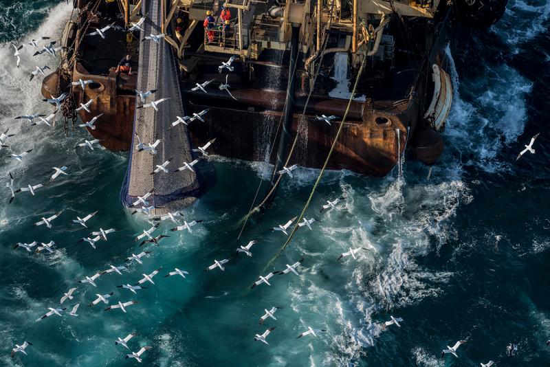 Video The Multi Million Pound Fishing Firms Monopolising