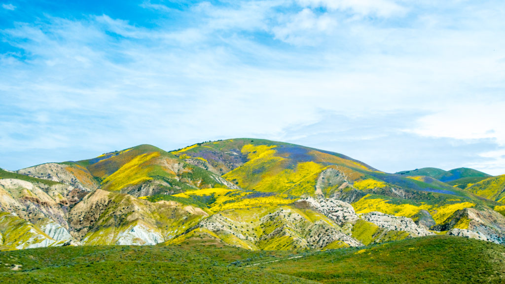 Carrizo Plain BLM
