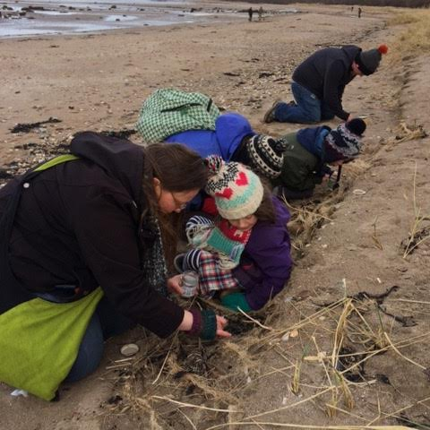 Alison Buckle and friends search for nurdles