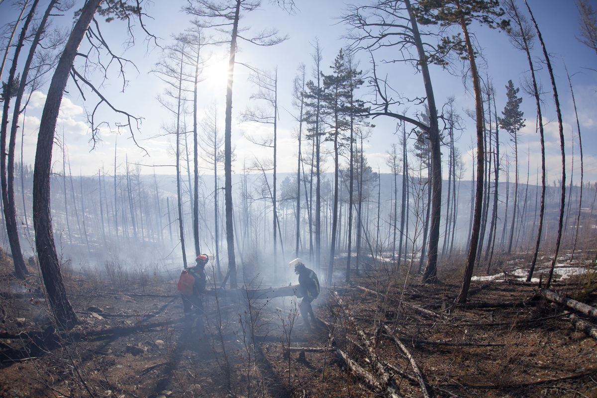 Fire Fighting in Baikal Region in Russia