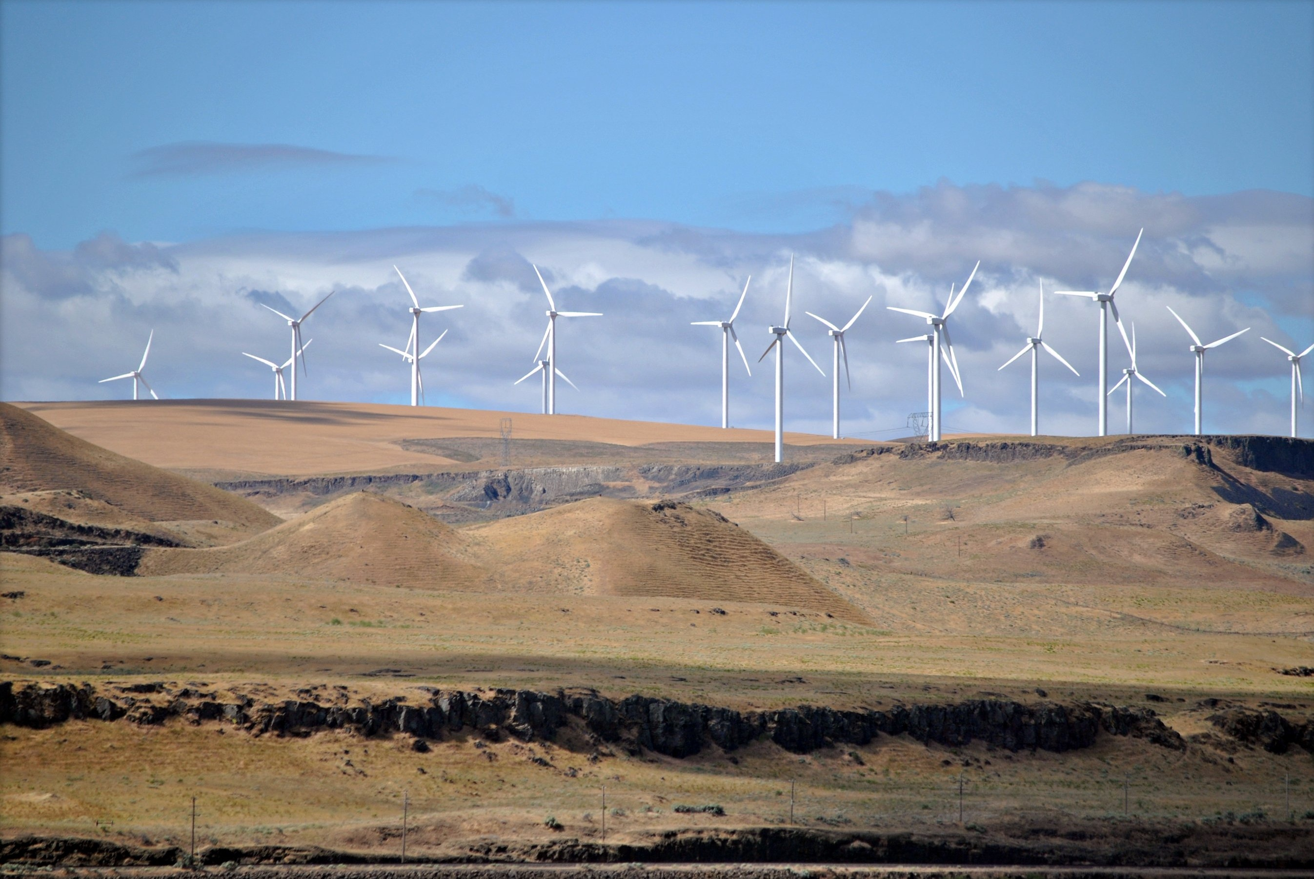 A wind farm in Oregon (Creative Commons)