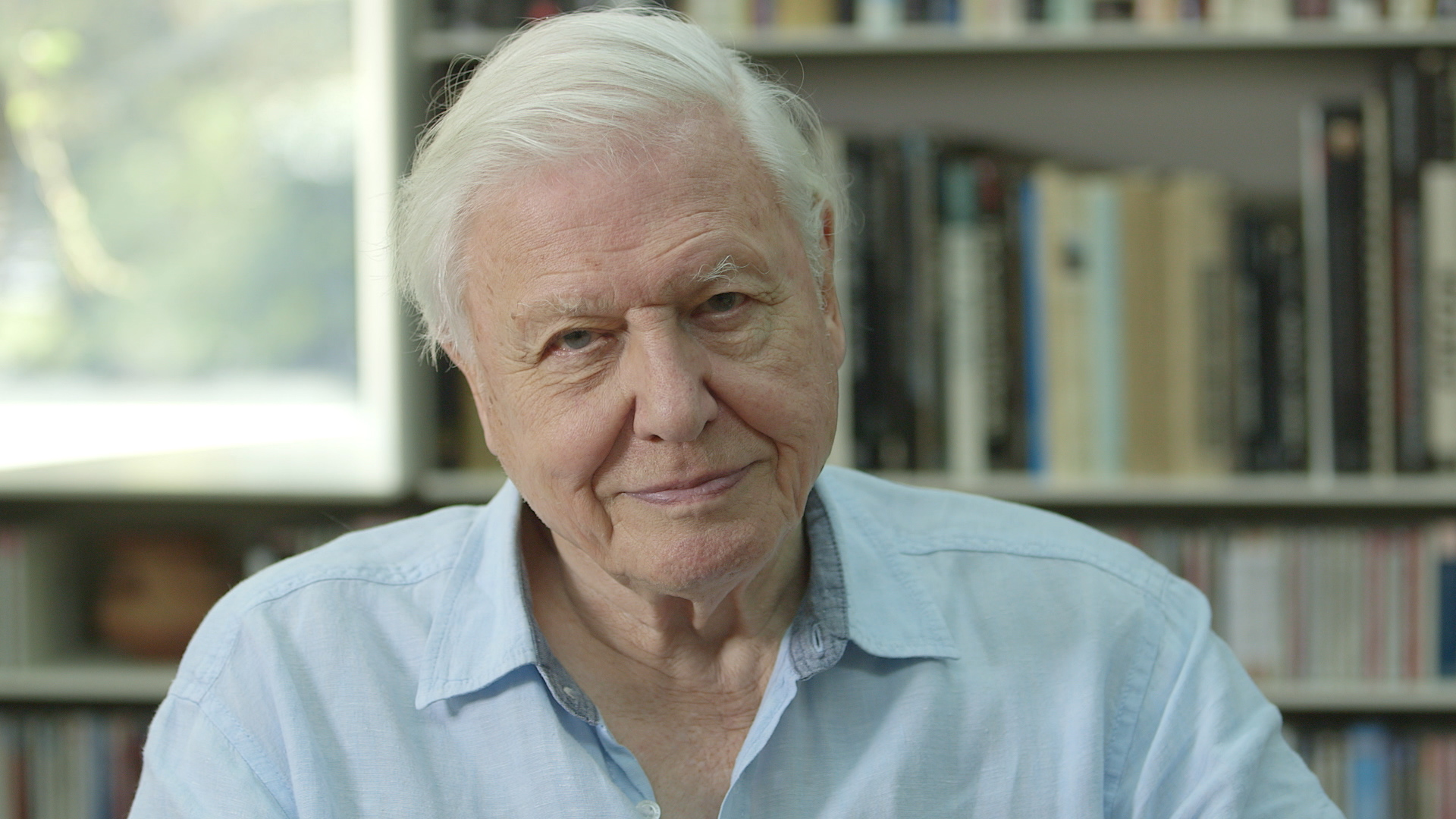 David Attenborough: On climate change, optimism and Blue Planet II